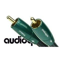Audioquest Forest - przewód 1xRCA coaxial o długości 1,5m